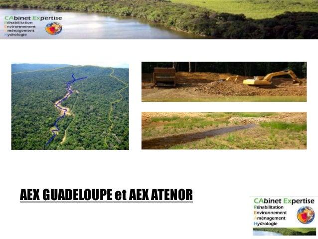 AEX GUADELOUPE et AEX ATENOR