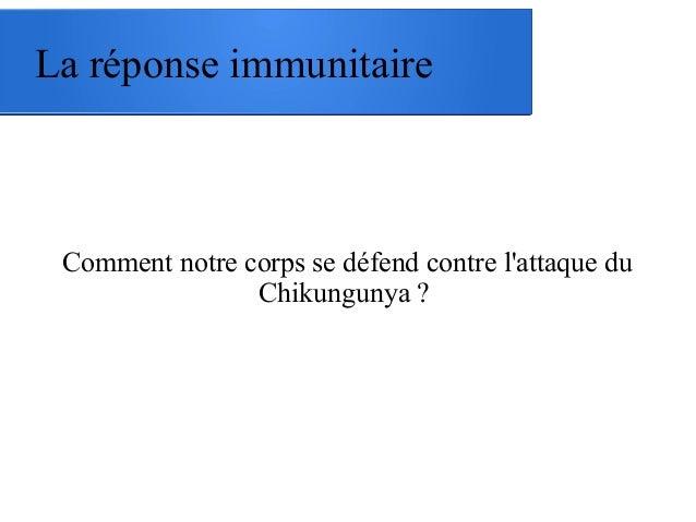 La réponse immunitaire Comment notre corps se défend contre l'attaque du Chikungunya ?