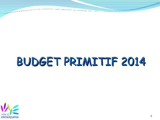 1 BUDGETBUDGET PRIMITIFPRIMITIF 20142014