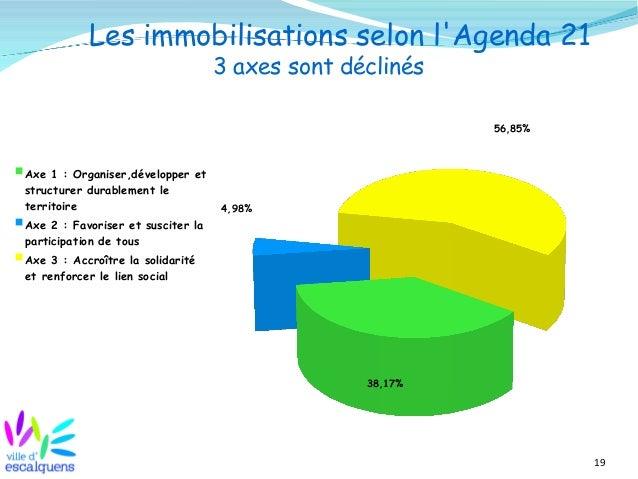 19 Les immobilisations selon l'Agenda 21 3 axes sont déclinés 38,17% 4,98% 56,85% Axe 1 : Organiser,développer et structur...