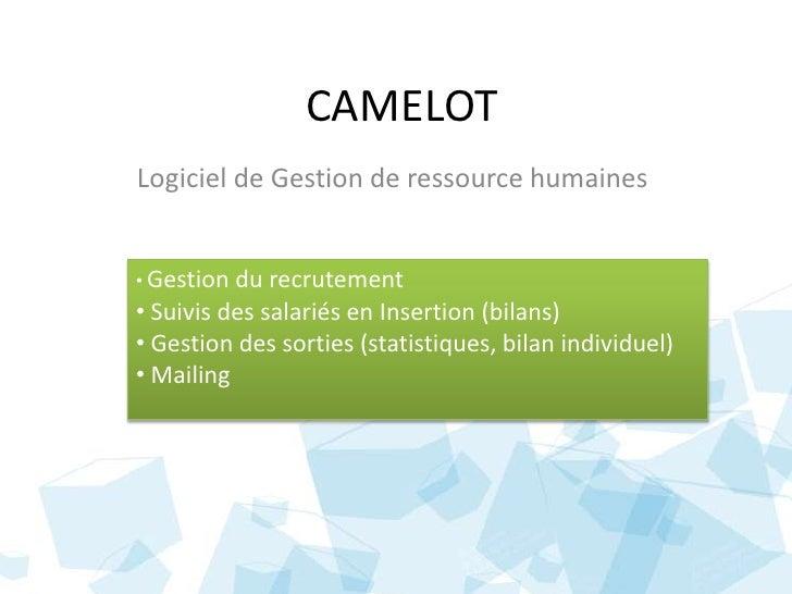 CAMELOT<br />Logiciel de Gestion de ressource humaines<br /><ul><li>Gestion du recrutement