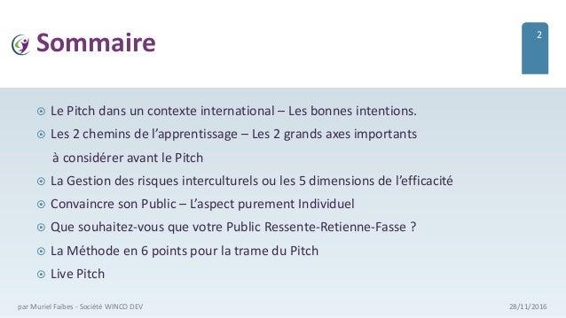 Sommaire  Le Pitch dans un contexte international – Les bonnes intentions.  Les 2 chemins de l'apprentissage – Les 2 gra...