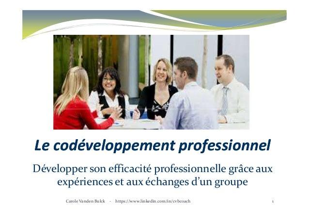 LeLe codéveloppementcodéveloppement professionnelprofessionnel Développer son efficacité professionnelle grâce aux expérie...