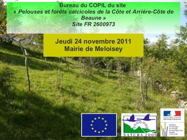 Jeudi 24 novembre 2011 Mairie de Meloisey Bureau du  COPIL  du site  « Pelouses et forêts calcicoles de la Côte et Arrièr...