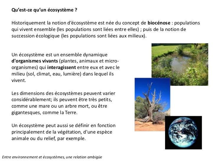 Nathalie Vaillant Entre Environnement Et écosystème Une Relation