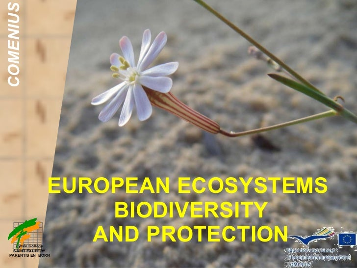 EUROPEAN ECOSYSTEMS  BIODIVERSITY  AND PROTECTION COMENIUS Lycée Collège SAINT EXUPERY PARENTIS EN  BORN