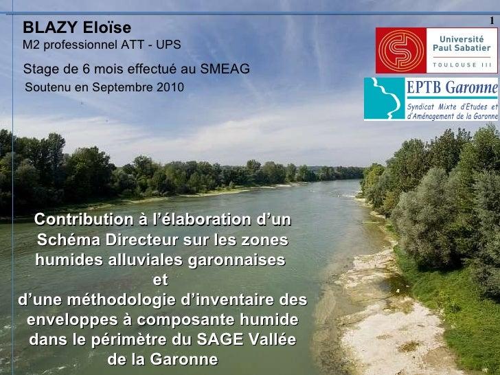 BLAZY Eloïse Stage de 6 mois effectué au SMEAG Contribution à l'élaboration d'un Schéma Directeur sur les zones humides al...