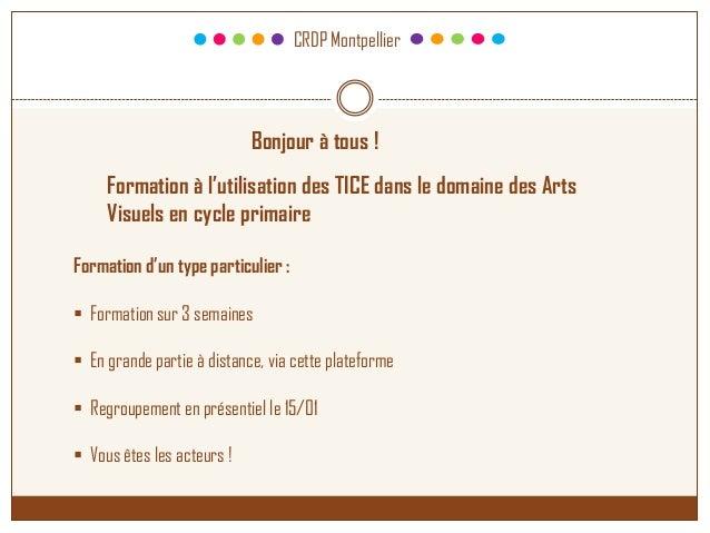 CRDP Montpellier Bonjour à tous ! Formation d'un type particulier :  Formation sur 3 semaines  En grande partie à distan...