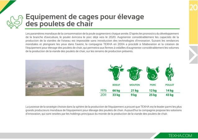 Equipement de cages pour élevage  des poulets de chair  Les paramètres mondiaux de la consommation de la poule augmentent ...