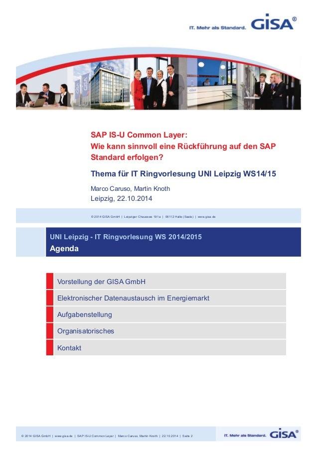 SAP IS-U Common Layer:  Wie kann sinnvoll eine Rückführung auf den SAP  Standard erfolgen?  Thema für IT Ringvorlesung UNI...