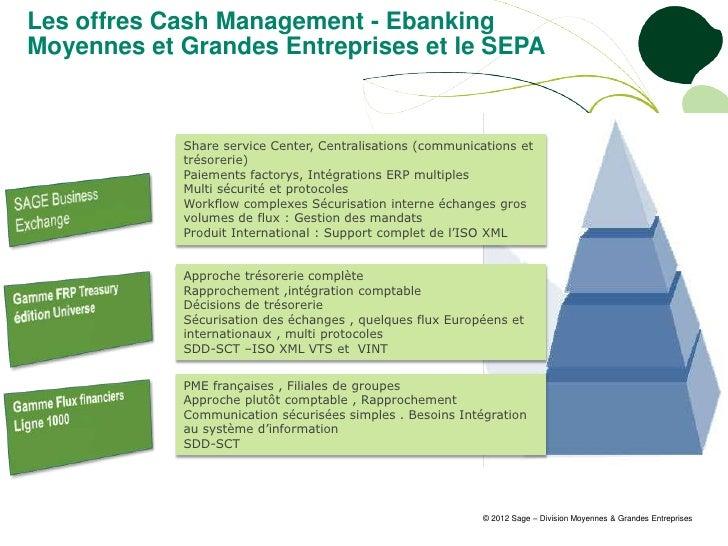 Les offres Cash Management - EbankingMoyennes et Grandes Entreprises et le SEPA            Share service Center, Centralis...