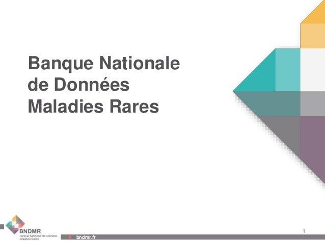 Banque Nationale de Données Maladies Rares  1 bndmr.fr