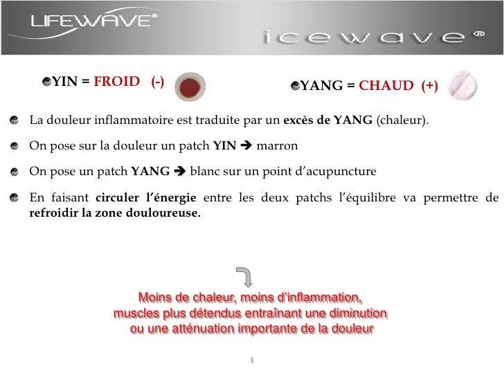 Présentation Icewave Slide 3
