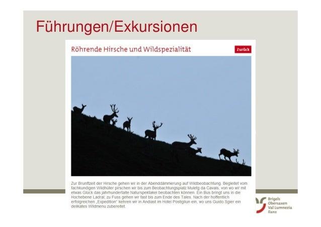 Surselva Tourismus AG: 2. Sommer Kick-Off für Mitarbeitende mit Gästekontakt (Brigels-Waltenburg-Andiast)