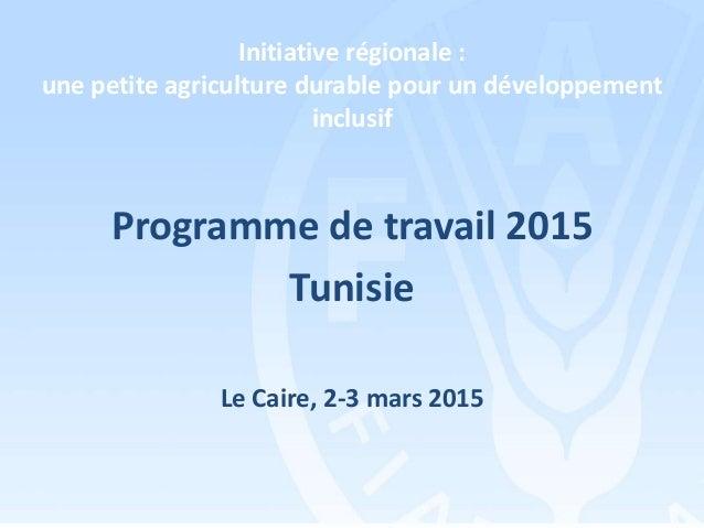 Initiative régionale : une petite agriculture durable pour un développement inclusif Programme de travail 2015 Tunisie Le ...