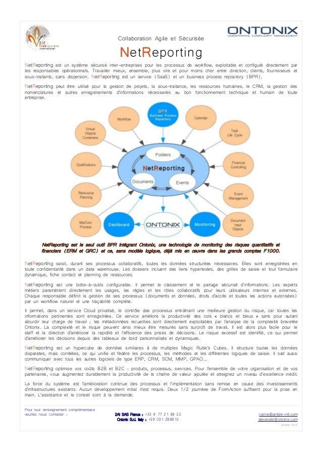 Collaboration Agile et Sécurisée  NetReporting  NetReporting est un système sécurisé inter-entreprises pour les processus ...
