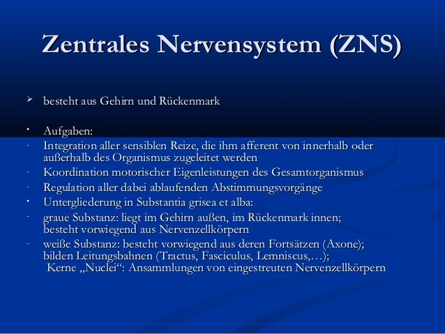 Präsentation neurologie 1