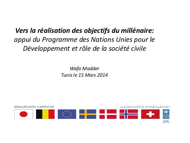 Vers la réalisation des objectifs du millénaire: appui du Programme des Nations Unies pour le Développement et rôle de la ...