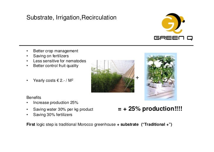 Production of greenhouse tomatoes in morocco - Increase greenhouse production cost free trick ...