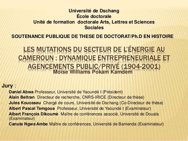 LES MUTATIONS DU SECTEUR DE L'ÉNERGIE AU CAMEROUN : DYNAMIQUE ENTREPRENEURIALE ET AGENCEMENTS PUBLIC/PRIVÉ (1904-2001) Moï...