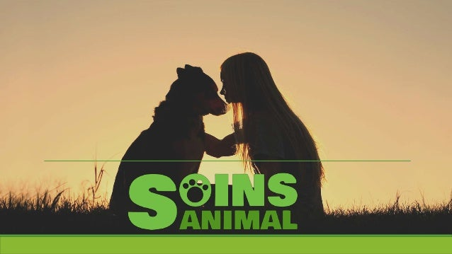 Sommaire Qui sommes-nous ? Pourquoi Soins Animal ? Tout savoir sur les toiletteurs Tout savoir sur les vétérinaires T...