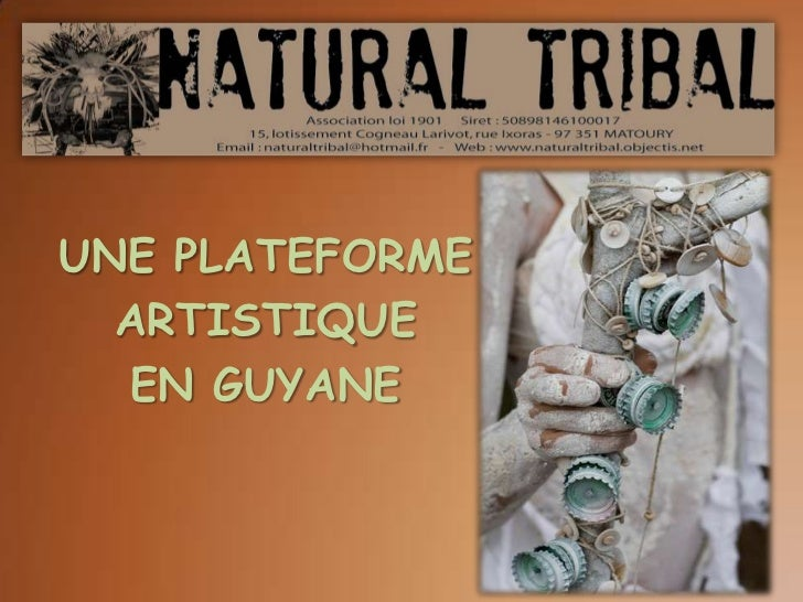 UNE PLATEFORME  ARTISTIQUE  EN GUYANE