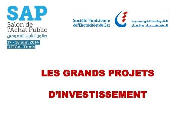 LES GRANDS PROJETS D'INVESTISSEMENT