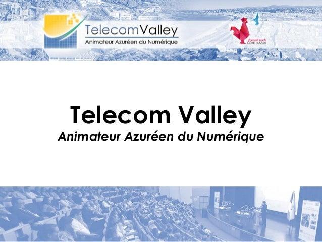Telecom Valley Animateur Azuréen du Numérique