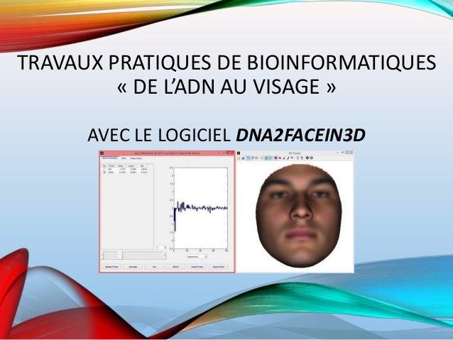 TRAVAUX PRATIQUES DE BIOINFORMATIQUES « DE L'ADN AU VISAGE » AVEC LE LOGICIEL DNA2FACEIN3D