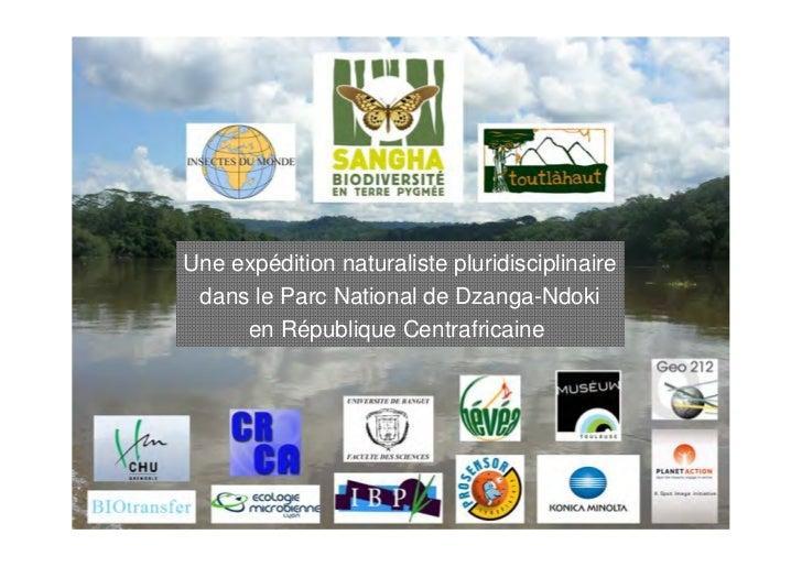 Une expédition naturaliste pluridisciplinaire dans le Parc National de Dzanga-Ndoki     en République Centrafricaine