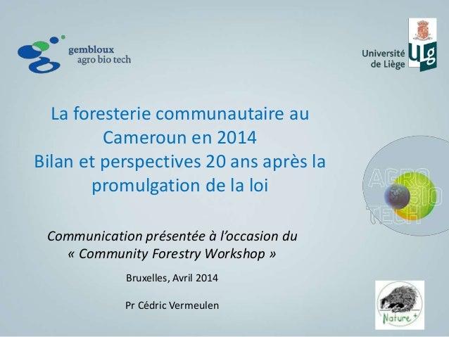 Présentation vermeulen community forestry workshop, brussel avril 2014 envoyé (2)
