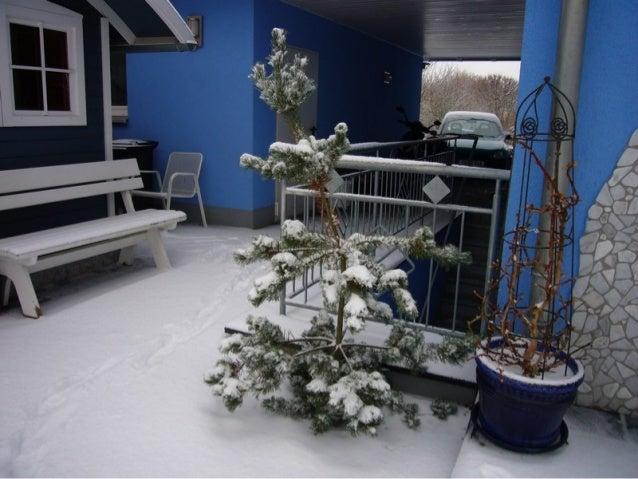 Präsentation winterbilder
