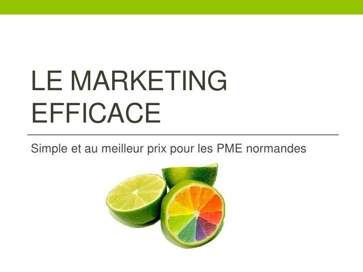 Le marketing efficace<br />Simple et au meilleur prix pour les PME normandes<br />