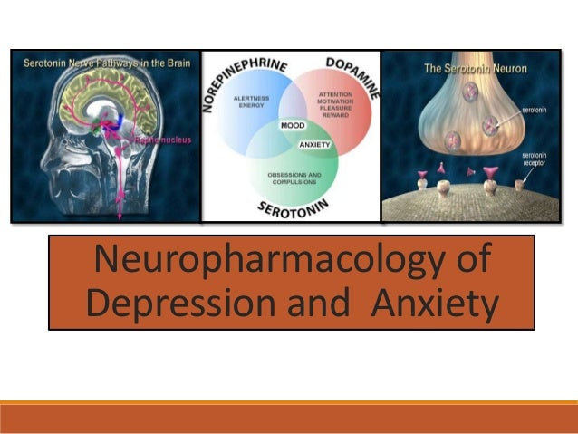 Psychopharmacholog        y Lecture 4 – Anxiety Disorders and             Treatment                                     S