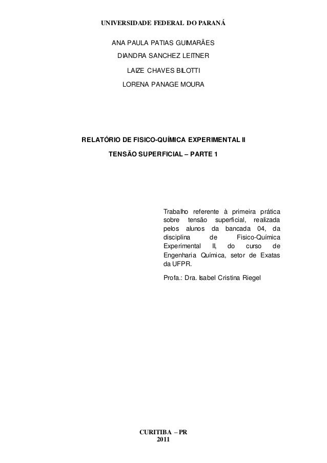 UNIVERSIDADE FEDERAL DO PARANÁ CURITIBA – PR 2011 ANA PAULA PATIAS GUIMARÃES DIANDRA SANCHEZ LEITNER LAIZE CHAVES BILOTTI ...