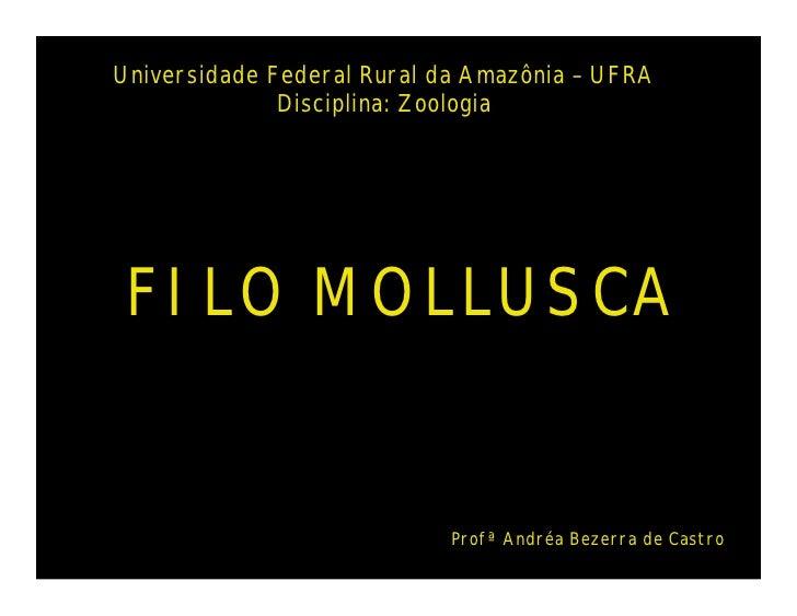Universidade Federal Rural da Amazônia – UFRA              Disciplina: Zoologia FILO MOLLUSCA                            P...