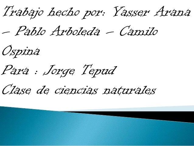 Trabajo hecho por: Yasser Arana– Pablo Arboleda – CamiloOspinaPara : Jorge TepudClase de ciencias naturales