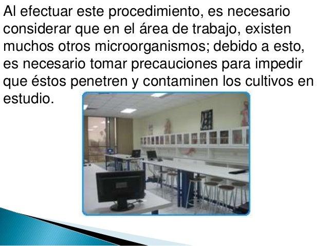 Prtsentacion asepcia y microorganismos Slide 3