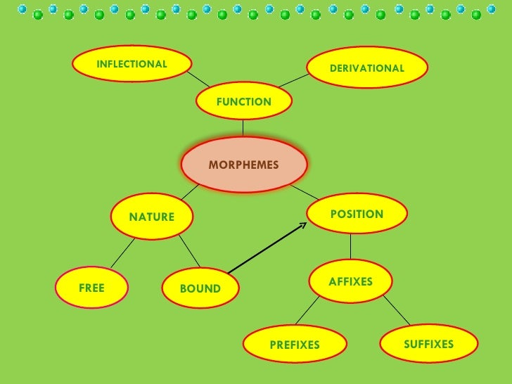 FUNCTION NATURE   POSITION DERIVATIONAL INFLECTIONAL FREE BOUND AFFIXES SUFFIXES PREFIXES MORPHEMES