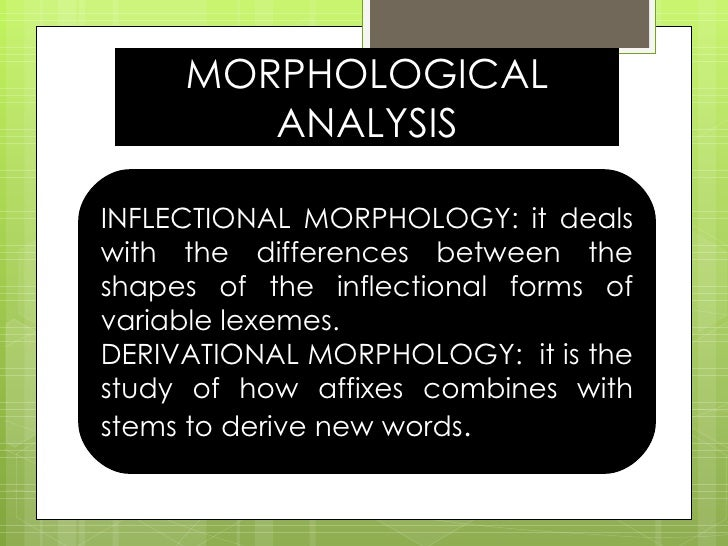 MORPHOLOGICAL ANALYSIS INFLECTIONAL MORPHOLOGY: it deals with the differences between the shapes of the inflectional forms...