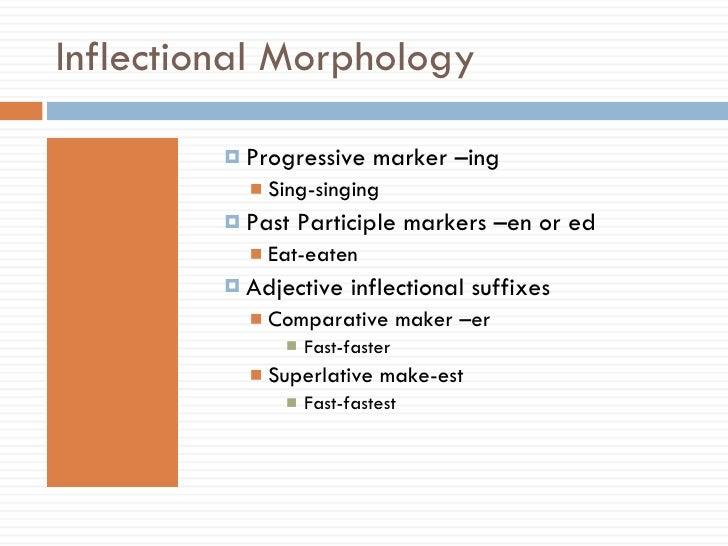 Inflectional Morphology <ul><ul><li>Progressive marker –ing </li></ul></ul><ul><ul><ul><li>Sing-singing </li></ul></ul></u...