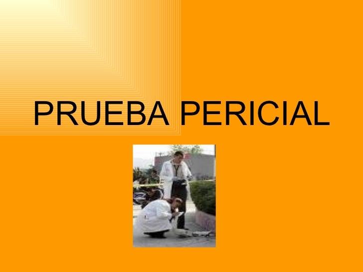 PRUEBA PERICIAL