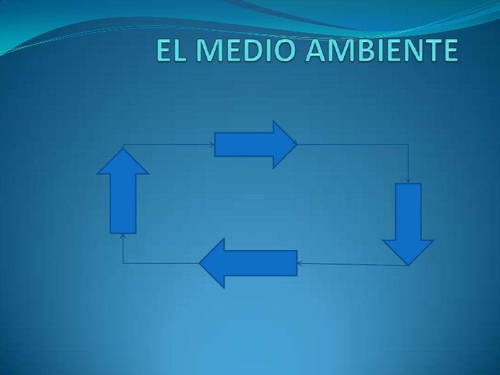 EL MEDIO AMBIENTE<br />