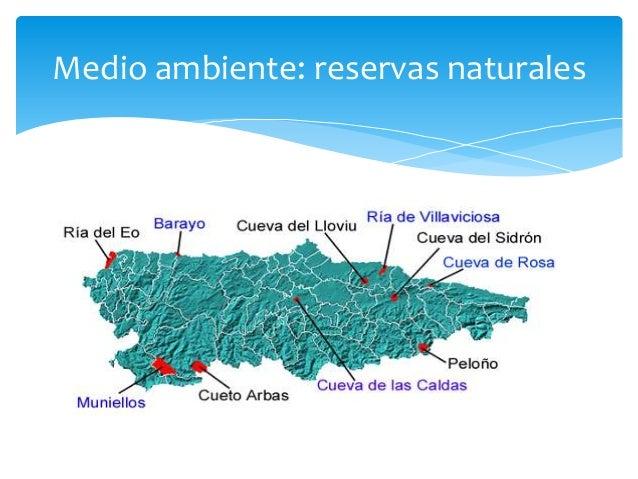 Uno de los grandes problemas medioambientales en España son los incendios que seproducen en las épocas mas secas, la mayor...