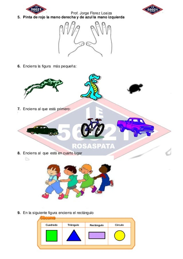 Prof. Jorge Florez Loaiza 5. Pinta de rojo la mano derecha y de azul la mano izquierda 6. Encierra la figura más pequeña: ...