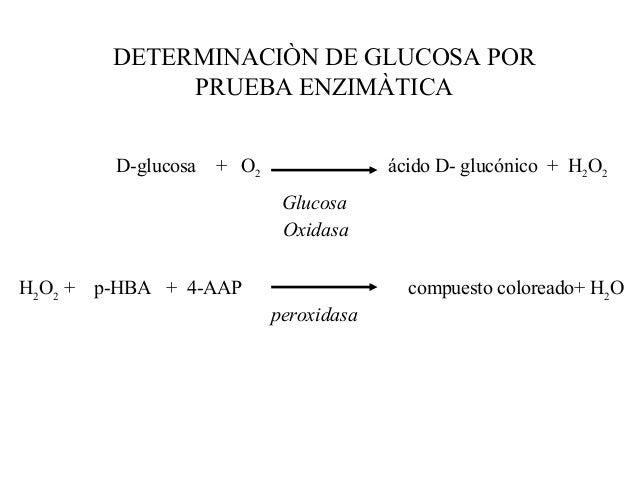Prueba de tolerancia a la glucosa (fisiologia)