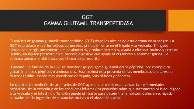 GGT GAMMA GLUTAMIL TRANSPEPTIDASA El análisis de gamma glutamil transpeptidasa (GGT) mide los niveles de esta enzima en la...