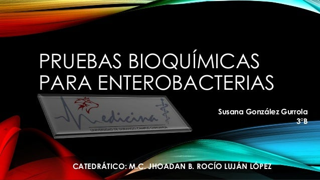 PRUEBAS BIOQUÍMICAS PARA ENTEROBACTERIAS Susana González Gurrola 3°B CATEDRÁTICO: M.C. JHOADAN B. ROCÍO LUJÁN LÓPEZ