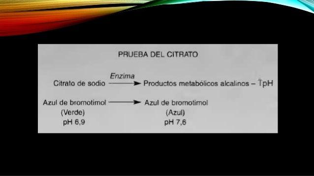 La formula del medio de citrato de Simmons es la siguiente: • Fosfato de amonio dihidrogenado 1 g • Fosfato dipotasico 1 g...