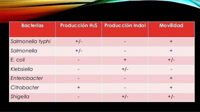 PROCEDIMIENTO Inoculación: picadura en forma vertical Tiempo: 28-48 hrs Temperatura 35 -37°C
